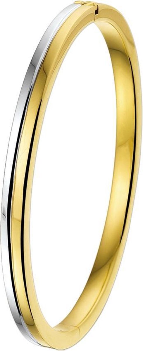 The Jewelry Collection Bangle Scharnier Vlakke Buis 6 X 60 mm - Bicolor Goud